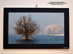 11 Ianuarie 2012 » Daniel PENCIUC - Locuri și meșteșuguri