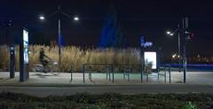 Quai de nuit (Bordeaux)