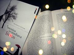 a menina que roubava livros / um ano inesquecivel (feerh) Tags: livros ameninaqueroubavalivros