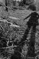 (justyourcofchi) Tags: shadow portrait england bw white black silhouette self outside person countryside model flickr photographer floor ground chiarnold justyourcupofchicom justyourcupofchi
