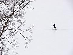 solitary (marianna armata) Tags: canada ski montreal crosscountry r marianna xcountry armata mariannaarmata panasoniclumixgh2 wintersnowfrostmariannaarmata