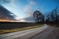 Wet road (- David Olsson -) Tags: trees sunset nature wet field clouds landscape alley nikon december sweden sigma dirtroad 1020mm avenue 1020 vrmland 2011 d5000 segerstad davidolsson 2exposuremanualblend ginordicjan12