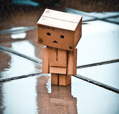 _MG_7933-Edit (Sergio Martn Photography) Tags: rain japan canon toy lluvia cardboard figure juguete 500d danbo danboard