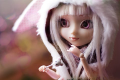 My sweet rabbit  (Rainbow Magical Orchestra ) Tags: pink white cute rabbit dolls little bokeh mint adorable dal sanrio melody coco ren pullip lovely cuuute poupes verveine joujou my azazelle pomky
