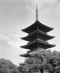 (Stanley) Tags: building japan temple fuji buddhist arc  4x5 100 nara  ebony largeformat     5x4 4x5camera   rodenstock   15056 toujitemple asiabuilding sv45te aposironarn    nationaltreasurerepairinginstitute