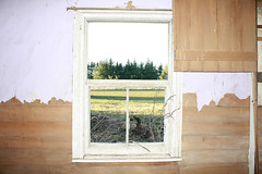 (c o u r t n e y w) Tags: window oldhouse winner courtneythecat courtneywotton