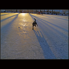 Skating champion (dellafels) Tags: winter sunset snow ice dogs paw pond skating till entlebucher dellafelspic blinkagain