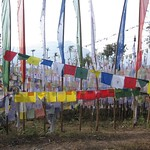 "Prayer Flags at Tashiding Monastery <a style=""margin-left:10px; font-size:0.8em;"" href=""http://www.flickr.com/photos/14315427@N00/6829494813/"" target=""_blank"">@flickr</a>"