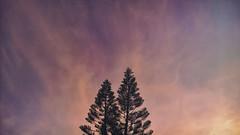 Autumn Sunset (andr3.moraes) Tags: autumn sunset brazil sky naturaleza color fall nature brasil cores nokia colorful natural natureza outuno cu prdosol pines cielo microsoft 930 lumia