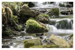 Source de la grotte de Malvaux (pascal0678) Tags: water longexplosure expositionlongue sourcedeau