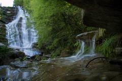 IMG_9364 (mauromalvolti) Tags: parco casentino cascate acquacheta foreste casentinesi