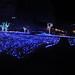 さがみ湖イルミリオン光の海の入口の写真