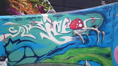 CARE IN PINK SHROOM (CARE BNF) Tags: street streetart never london art boys beauty lost graffiti team montana bc cd c id banksy 94 bnf ha nl graff mad care met aerosol awe mtm tca rt dci ease lostboys spg robbo dds dtb fades ctk madc cbm fued wrh trellicktowers ukgraffiti asmer beautyneverfades londongraff teamrobbo stockwellgraffiti caregraffiti