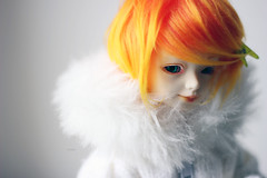 Winter (HoshiBerry ★) Tags: winter orange white ball doll chibi bjd alchemic lilin jointed labo unoa quluts