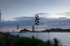 Playa de Los Genoveses (gsus.alcaraz) Tags: parque beach de cabo natural playa nocturna gata montaa almera gatanijar gsusalcaraz