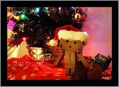 Feliz Navidad (*marimel*) Tags: azul arbol navidad luces rojo chocolate amor nostalgia amarillo cardboard santaclaus felicidad amistad nochebuena regalos feliznavidad danbo papanoel mantecados gorrito polvorones 24diciembre adoracin cardbo dandoard piccolodanbo pequeodanbo