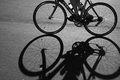wind in the ears (Benjamin Burkhart) Tags: shadow newzealand blackandwhite bw bicycle silhouette cycling blackwhite cycle wellington panning aotearoa wellingtonharbour canonef50mmf18ii tewhanganuiatara