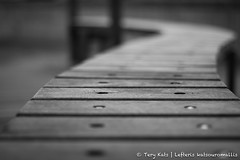 Bench. (TeryKats) Tags: street wood bw white black field canon bench eos 50mm wooden 14 cyprus sit shallow depth 500d protaras paralimni
