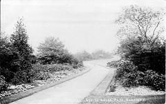 Locke Park, Barnsley, South Yorkshire, c1908 (Willow Tree2011) Tags: yorkshire barnsley southyorkshire oldpostcards vintagepostcards lockepark oldbarnsley