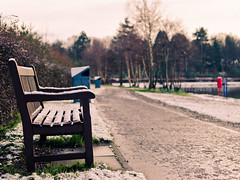 As soon go kindle fire with snow, as seek to quench the fire of love with words. (w.mekwi photography [on the road]) Tags: trees snow bench dof bokeh quote balloch hbm lochlomondshores valeofleven bokehlicious nikond7000 wmekwiphotography mekwicom
