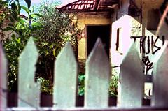 H 1 (a.ninguem) Tags: house abandoned film casa xpro ruins cross kodak destruction chrome ruinas zenit filme process abandono cromo devastação df300 expided
