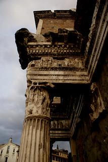 Foro di Nerva detaglio Colonnata/ Roma