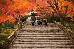 (sunnywinds*) Tags: japan temple kyoto   ryoanji  fujiprovia400x