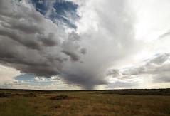 ITS RAINING OVERTHERE  COME PIOVE LAGGIU (tiz.zeta) Tags: sky storm rain clouds nuvole horizon meadow cielo pioggia prato temporale orizzonte