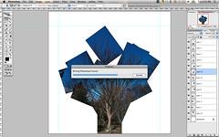 WIP (daveelmore) Tags: copyright tree photoshop screenshot cs2 workinprogress progress wip photomontage layers allrightsreserved ep2 daveelmore 13photos lumixleicadgmacroelmarit45mm128 writingphotoshopformat daveelmore