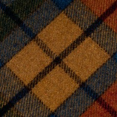 X marks the spot (Lynn McFulton) Tags: wool blanket project365 3652012 2010yip antiquebuchanantartan