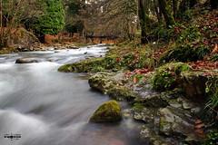 Entre corrientes (josemanuel_polanco) Tags: verde canon eos paisaje bosque monte rios cantabria fluvial ucieda 1000d blinkagain
