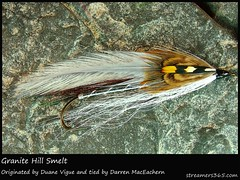 #21/365 Granite Hill Smelt - Darren MacEachern (pacres) Tags: stone grey fly fishing feather flyfishing 365 hook minnow lure streamer junglecock flytying smelt trolling 366 baitfish 21366 21365 hackle 365project flytyer darrenmaceachern streamers365 duanevigue