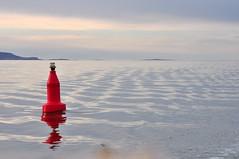 Red buoy (Great Salt Lake Images) Tags: winter utah sailing greatsaltlake buoyant yearend12