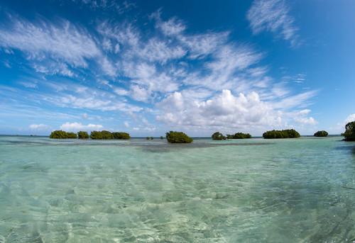 Vacances aux Caraïbes