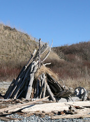 Driftwood teepee (Librarianguish) Tags: walk gorgeous bluff sunnyday 212 ebeyslanding unseasonablywarm