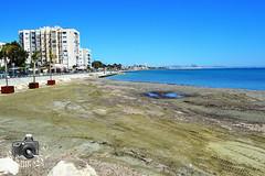 City of Larnaca (ShaunMYeo) Tags: cyprus cipro larnaca kipar zypern larnaka kypros kbrs chypre chipre kypr cypr cypern kpur kipr sipra kipras ciper cipru ciprus xipre siprus   syprus kipra kipro      sp ipru    kupelo sayprus qipro   kpros  cyprum        qibrs  kaiperu   saipurasi      sayiprasi