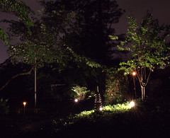 IMG_8324.CR2 (jalexartis) Tags: lighting trees yard landscape lights backyard landscaping ivy windchimes