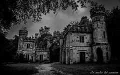 Perdidos en el tiempo/Lost in time (En medio del camino) Tags: ireland bw architecture forest outdoors europa europe monochromatic eire bosque irlanda lismore ballysaggartmoretowers