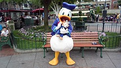 Donald with Duffy (BeautifulToyReviews) Tags: bear outside outdoors duck anniversary disneyland character parks disney donald diamond celebration duffy edition meet 60th greet