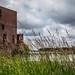 Faribault Woolen Mill