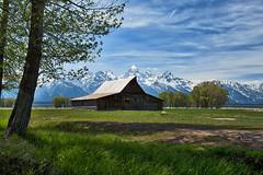 Mormon Row Barn (redfishsuefish) Tags: mountains history barn nationalpark historical tetons oldbarn grandtetonnationalpark