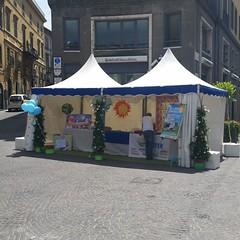 Il gazebo in piazza Verdi a Viterbo