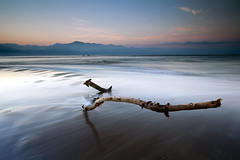 Don't be a stick in the mud (dK.i photography (1.5 mil-still uninvited)) Tags: ocean longexposure morning vacation beach water sunrise canon mexico dawn day pacific driftwood 350 nuevovallarta puertovallarta c