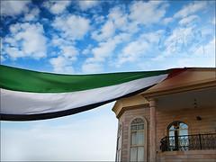 حملة فوق بيتي علم (MariomZ) Tags: uae فوق حملة علم بيتي عزج دآم يالإمـآرات