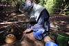Clearance in progress (Humanity & Inclusion UK) Tags: female danger women accidents landmines conflict senegal casamance handicapinternational weapons amputee demining disability risks mineclearance