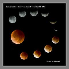 Lunar Eclipse San Francisco December 10 2011 (davidyuweb) Tags: sanfrancisco california usa collage eclipse san francisco december 10 total lunar sfbay lunareclipse sfist 2011 totallunareclipse lunareclipse2011 lunareclipsedecember102011 totallunareclipsecollage