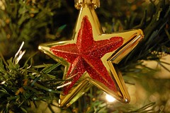 Christmas Star (DaveJC90) Tags: christmas light red holiday blur colour detail macro tree green closeup season gold star focus shiny shine bright bell seasonal decoration sharp clear ornament present bauble sharpness photosandcalendar panoramafotogrfico