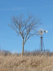 and yet, we endure (David Sebben) Tags: county tree windmill farmhouse rural alone barns johnson iowa gone together survive