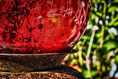 Defining Defects (hbmike2000) Tags: red glass yard ball garden nikon rust vase aged d200 defect hdr hollow odc2 ourdailychallenge hbmike2000