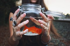 minnow (Luca.Franqueira) Tags: espaa orange fish pez water girl spain hands agua galicia jar naranja bote luciafranqueira